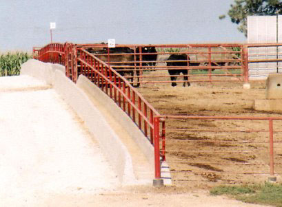 Feedlot Construction